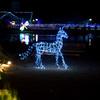 ginter lights_Nov282009_0013