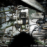 skiboadamsphotography's photo