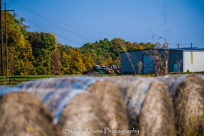 truck graveyard_110317_0028