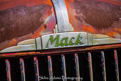 truck graveyard_110317_0013