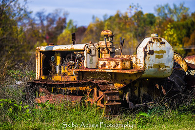 truck graveyard_110317_0020