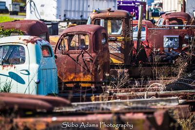 truck graveyard_110317_0019