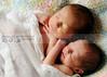 newborn 31