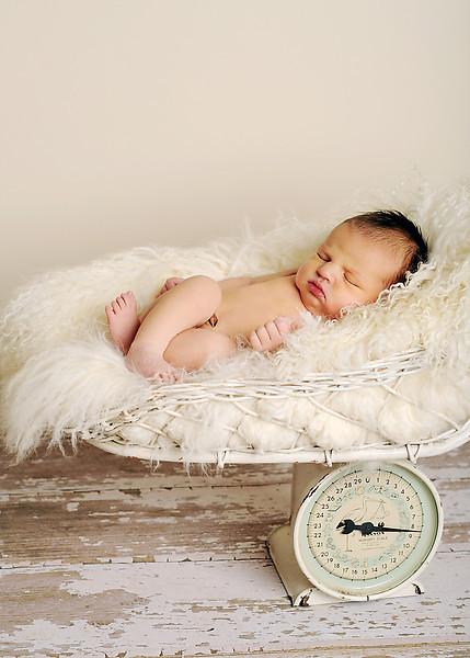Hollis newborn 42