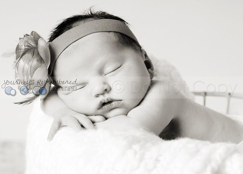 Hollis newborn 23-2