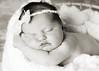 Hollis newborn 32-2