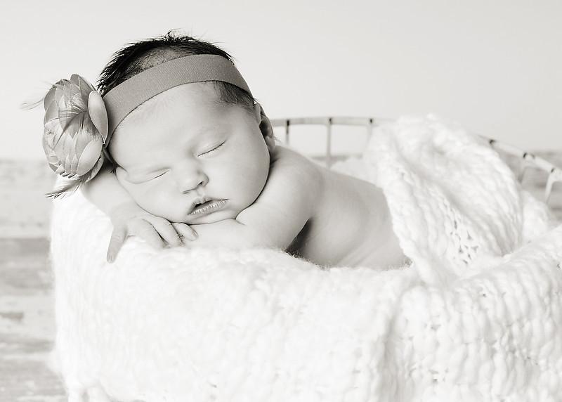Hollis newborn 26-2