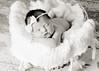 Hollis newborn 36-2