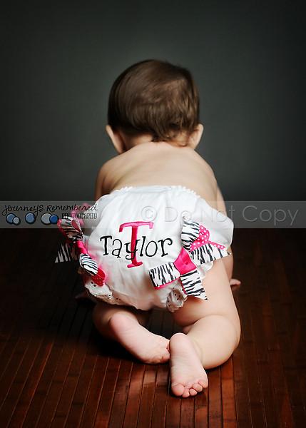 Taylor 33