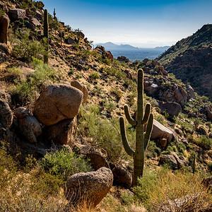 110119_6095_Scottsdale AZ
