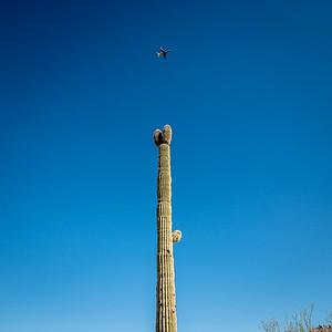 110119_6054_Scottsdale AZ