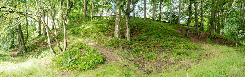 Panorama of Path at Craigie