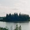 Elk Island National Park, Alberta- Canada