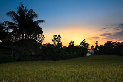 Sunset over rice field, Ubud, Bali