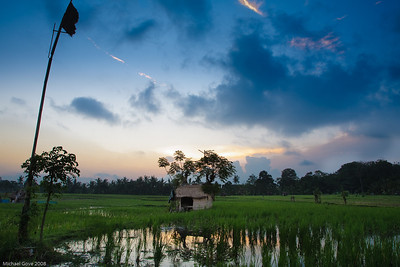Sunset over rice field, Bali