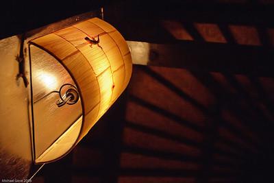 Gecko on a lamp, restaurant, Bali