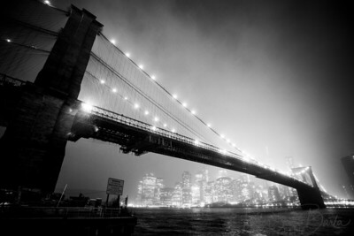 NY_Brooklyn_Bridge_Park-006