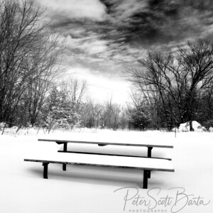 Winter Picnic_Minnesota