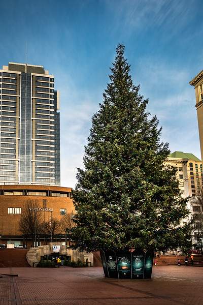 Christmas Tree at Pioneer Courthouse Square