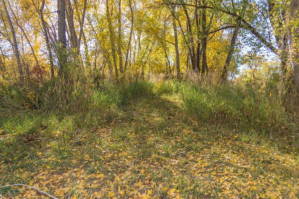 Bayfield Little Pine River Park