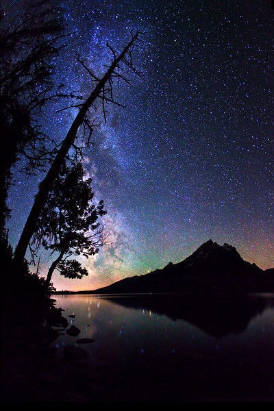 Trees silhouetting the Milky Way stars, as they shine over Jenny Lake and the reflecting Grand Teton peak, Grand Teton National Park