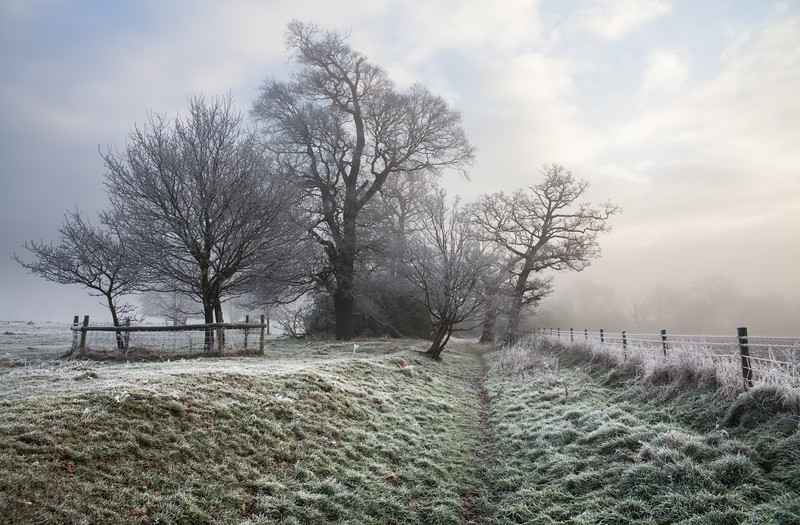 Hard frost over fields in the Berkshire countryside