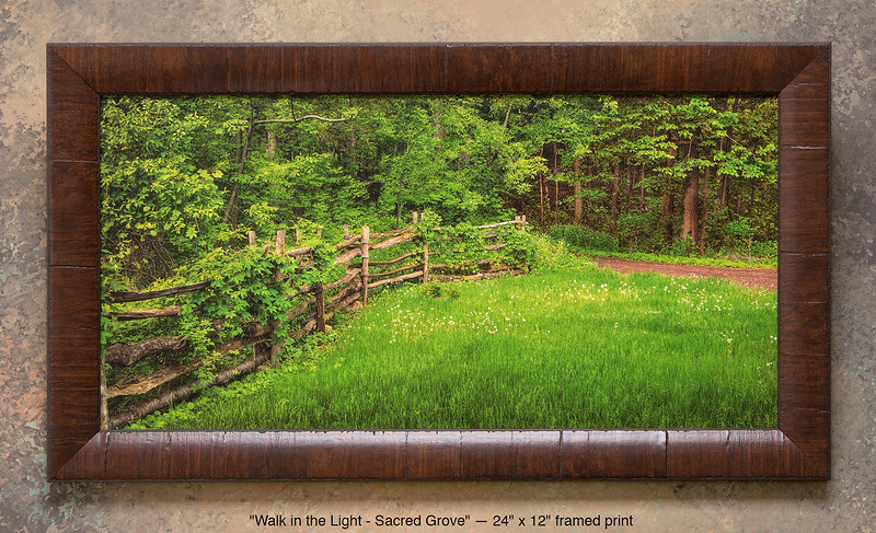 "<i>""Walk in the Light""</i> ~ Entrance to The Sacred Grove from the Smith Farm. This is a pre-printed, ready-to-hang, framed print (24"" x 12"" with UV-anti-fade-anti-glare lamination, simulated cherry wood frame). FRAMED PRICE is $81.00 + tax. PRINT ONLY PRICE is $21.00 + tax. To purchase, call 801-569-0922 or 801-558-2701, or email to RoyceBairPhoto@gmail.com — <u>Do NOT order this pre-made print via the above online ""Buy"" button</u>. To order custom size prints of this image (takes one to two weeks), <a href=""http://roycebair.smugmug.com/Personal-Work/Sacred-Grove/6588918_ZzngLj#!i=425500791&k=hjtCPQq"">click here</a>."