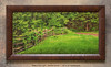 """<i>""""Walk in the Light""""</i> ~ Entrance to The Sacred Grove from the Smith Farm. This is a pre-printed, ready-to-hang, framed print (24"""" x 12"""" with UV-anti-fade-anti-glare lamination, simulated cherry wood frame). FRAMED PRICE is $81.00 + tax. PRINT ONLY PRICE is $21.00 + tax. To purchase, call 801-569-0922 or 801-558-2701, or email to RoyceBairPhoto@gmail.com — <u>Do NOT order this pre-made print via the above online """"Buy"""" button</u>. To order custom size prints of this image (takes one to two weeks), <a href=""""http://roycebair.smugmug.com/Personal-Work/Sacred-Grove/6588918_ZzngLj#!i=425500791&k=hjtCPQq"""">click here</a>."""