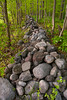 "Stone Rubble: Most of the stone ""fencing"" on the Smith Farm was piled there as rubble to go underneath and support a split rail fence. The fence is long gone. THIS AREA, IS ALONG THE BORDER OF THE SMITH FARM, just outside the ""Scared Grove"". To ORDER custom size prints of this image (takes one to two weeks), click on the ""Buy"" above this image (choose ""This Photo"" from the drop-down menu). You have your choice of glossy, luster, and metallic photographic paper prints, <a href=""http://www.smugmug.com/prints/giclee-canvas-watercolor"">Giclée Watercolor</a> prints, <a href=""http://www.smugmug.com/prints/giclee-canvas-watercolor"">Giclée Canvas</a> prints, <a href=""http://www.smugmug.com/prints/thinwraps"">ThinWraps</a> prints, and <a href=""http://www.smugmug.com/prints/metalprints"">Metal</a> prints. All custom prints are made by the professional people at <a href=""http://bayphoto.com/"" target=""_blank"">Bay Photo Lab</a>, and shipped directly to you."