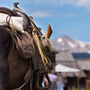 Western saddle, bedroll, canteen and rifle on horse