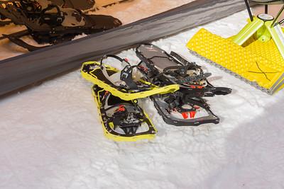 Snowshoe Demos