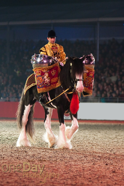 Household Cavalry Drums