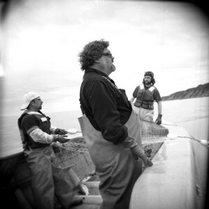 Butch Leman and his fishing crew observe one of their nets between sets.  Sometimes they can see the salmon strike it as they swim through.