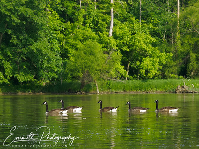 201306-Kayaking-0012
