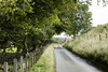 Road to Kitleyknowe