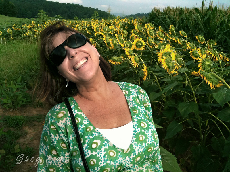 Angie in sunflower field at the Biltmore House in Asheville, NC.
