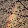 Winter_Rainbow-1