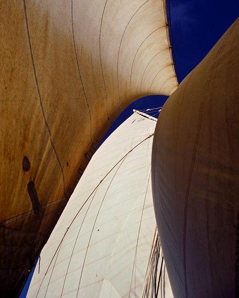 Caribbean sails.