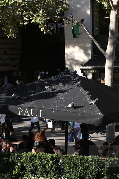 Paris, France - 09.01.13<br /> Credit: Jonathan Grassi