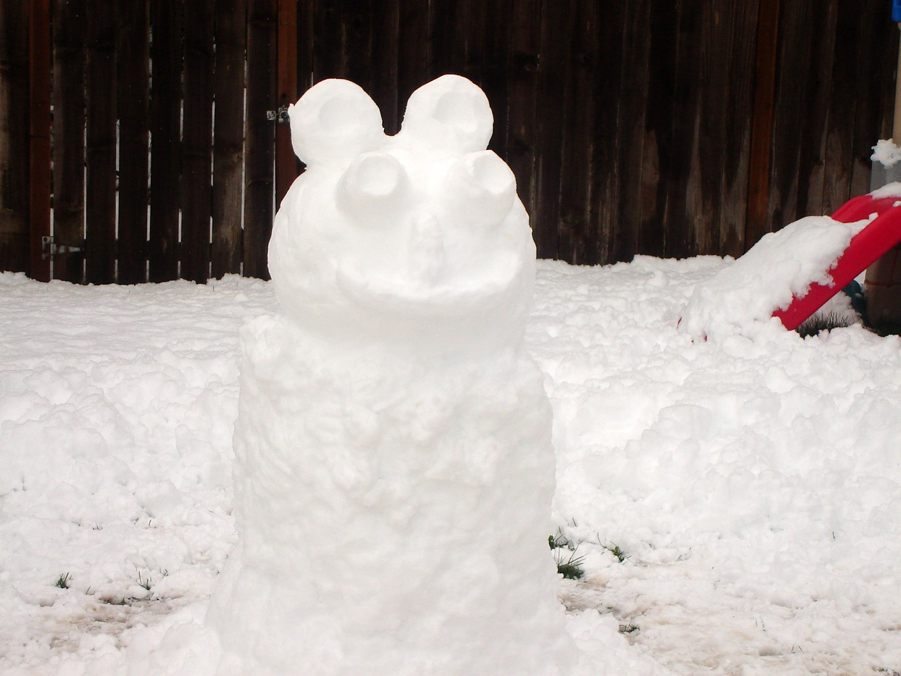 "Leslie calls this the ""snow frog."""