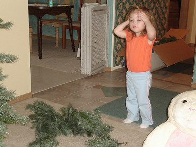 Helping to put up the Christmas tree.