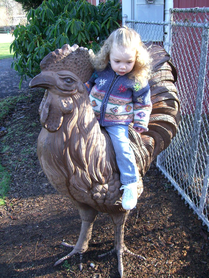 Kimber did not want to be on this chicken at Jennings Park, but she suffered through it for the picture.