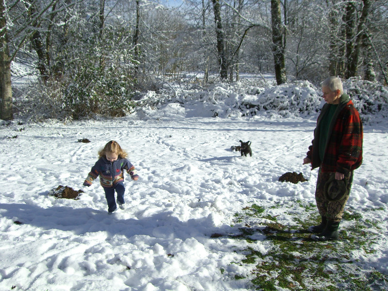 Kimber and Sammy playing outside in the snow at Dad's under Sharon's watchful eye.