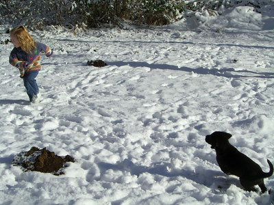 Kimber and Sammy playing outside in the snow at Dad's.