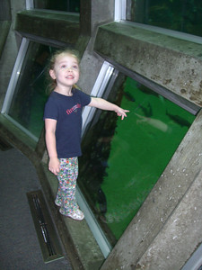 An underwater bubble-type thing where we could see all the fish swimming around us. She loved this part!