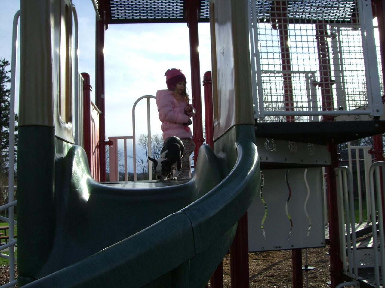 Jennings park. Will Chloe try the slide again?