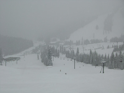 Looking down Skyline at Stevens Pass.