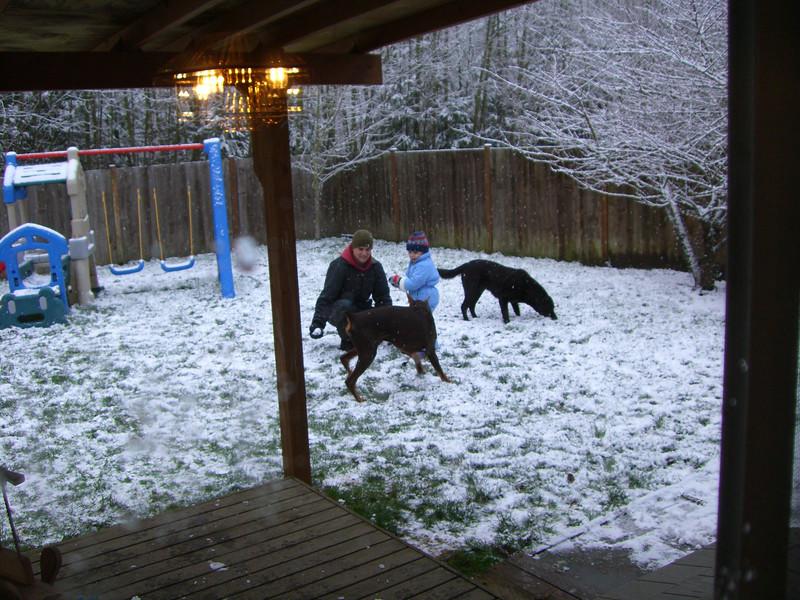 Feeding the dogs snowballs.
