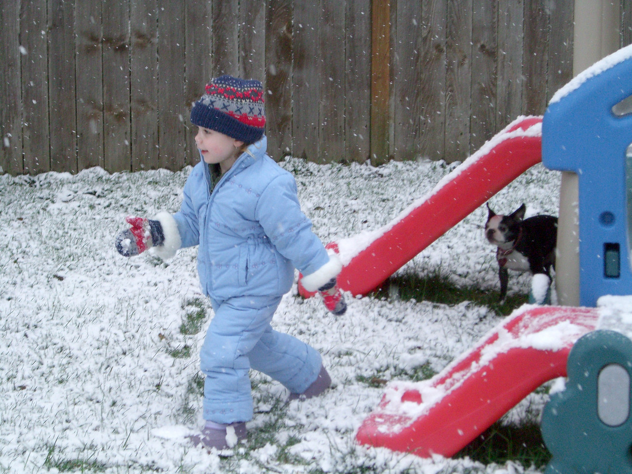 Kimber and Chloe playing in the snow.