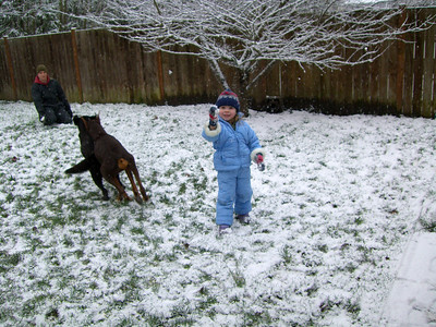 Throwing snowballs for the dogs [and at each other].